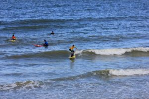 Surf sco